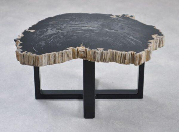 Couchtisch versteinertes Holz 35230