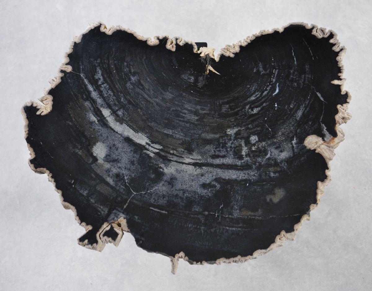 Couchtisch versteinertes Holz 35232
