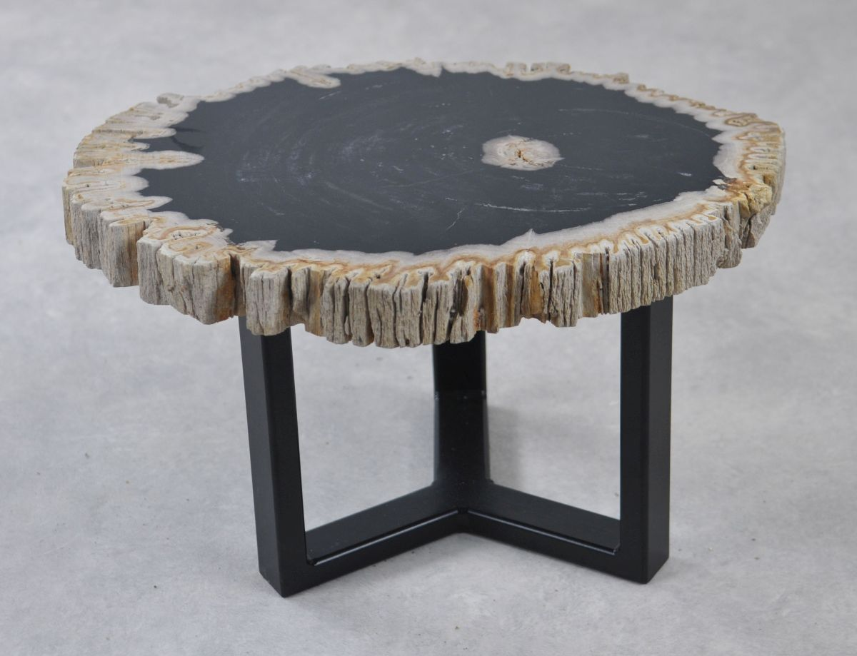 Couchtisch versteinertes Holz 35241