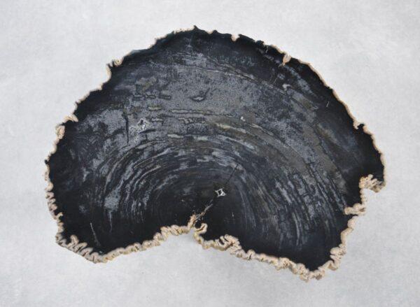 Couchtisch versteinertes Holz 35243
