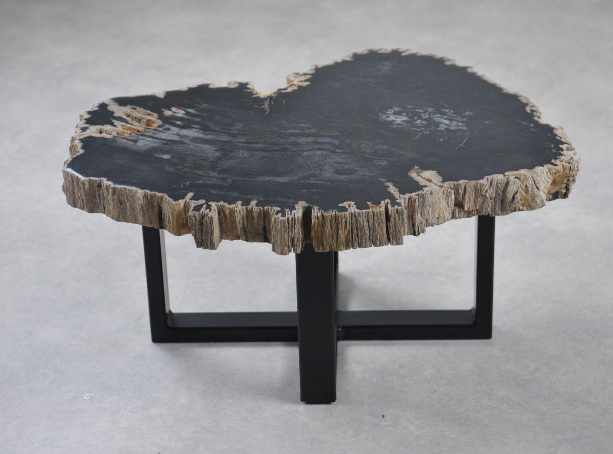 Couchtisch versteinertes Holz 35245