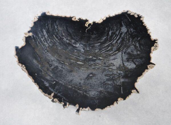 Couchtisch versteinertes Holz 35247