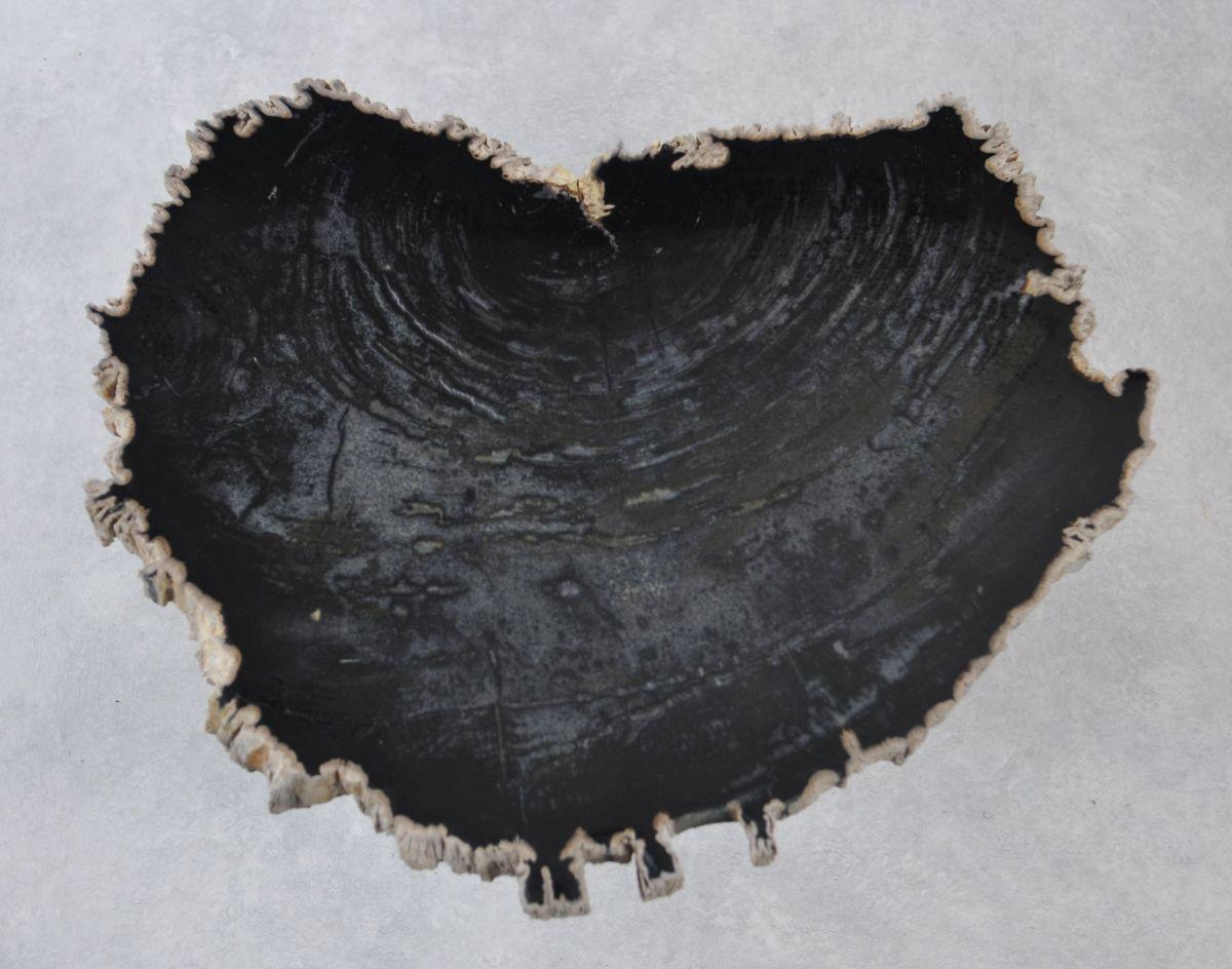 Couchtisch versteinertes Holz 35248