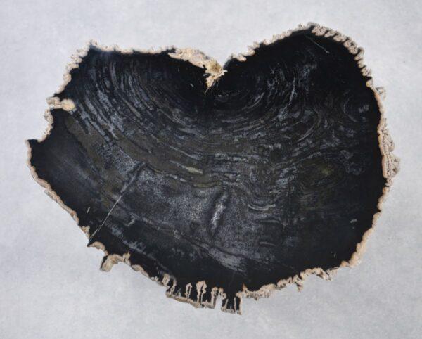 Couchtisch versteinertes Holz 35249