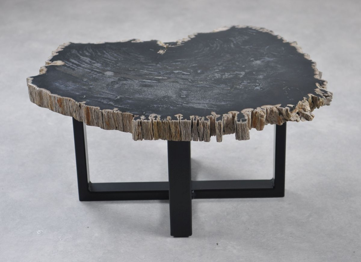 Couchtisch versteinertes Holz 35250