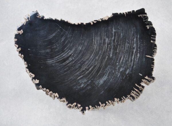 Couchtisch versteinertes Holz 35253