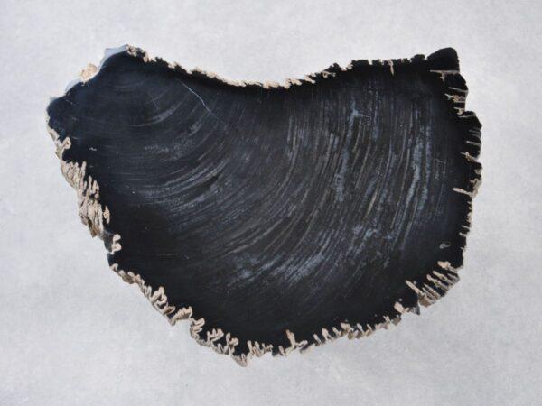 Couchtisch versteinertes Holz 35254