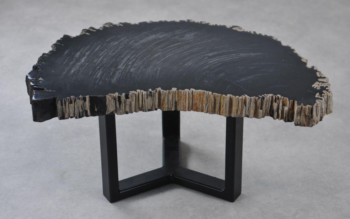 Couchtisch versteinertes Holz 35256