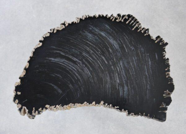 Couchtisch versteinertes Holz 35258