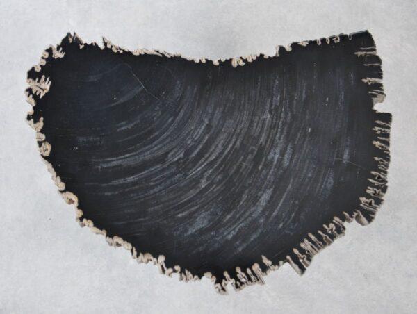 Couchtisch versteinertes Holz 35262