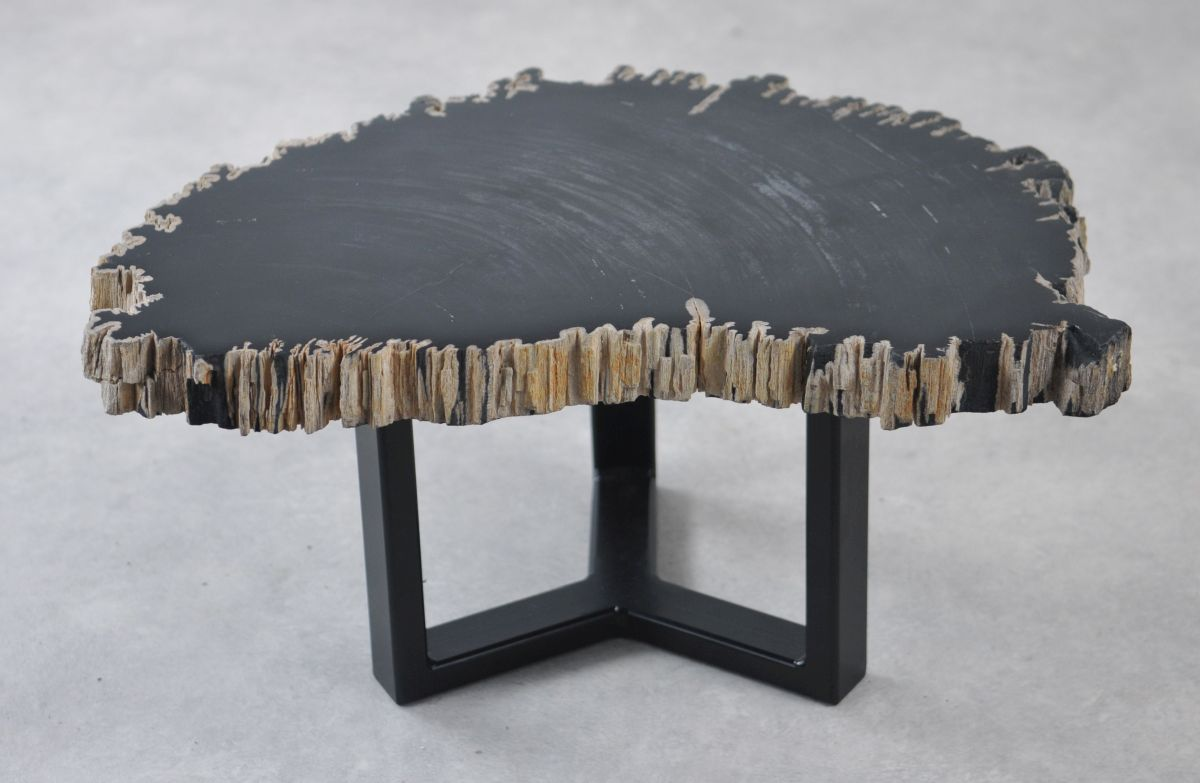 Couchtisch versteinertes Holz 35264