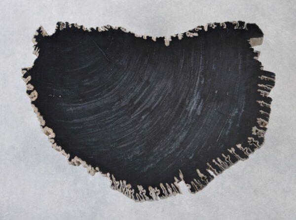 Couchtisch versteinertes Holz 35265