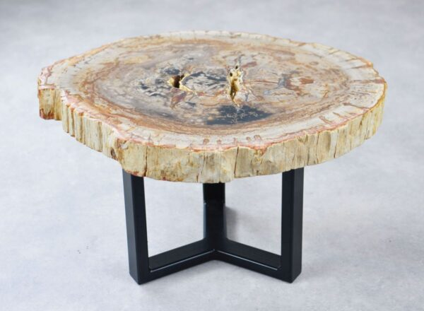 Couchtisch versteinertes Holz 35275