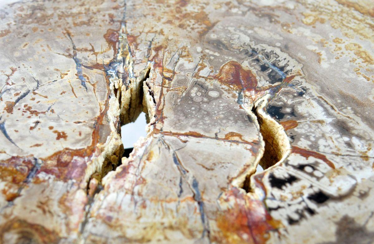 Couchtisch versteinertes Holz 35276