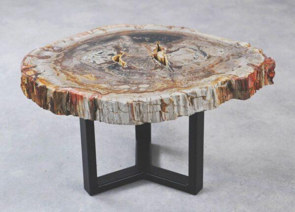 Couchtisch versteinertes Holz 35279