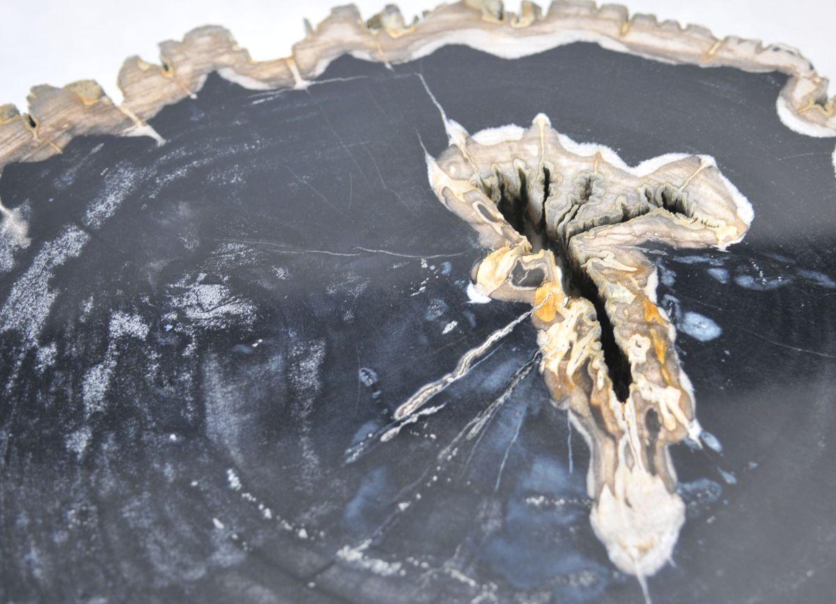 Salontafel versteend hout 35139