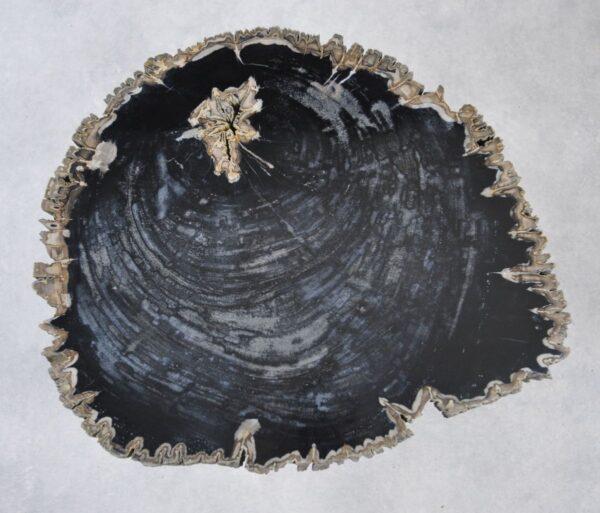 Salontafel versteend hout 35142