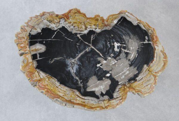 Salontafel versteend hout 35154