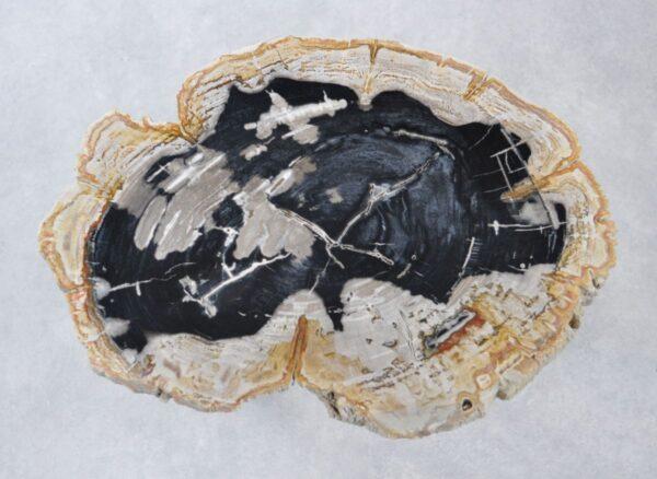 Salontafel versteend hout 35156