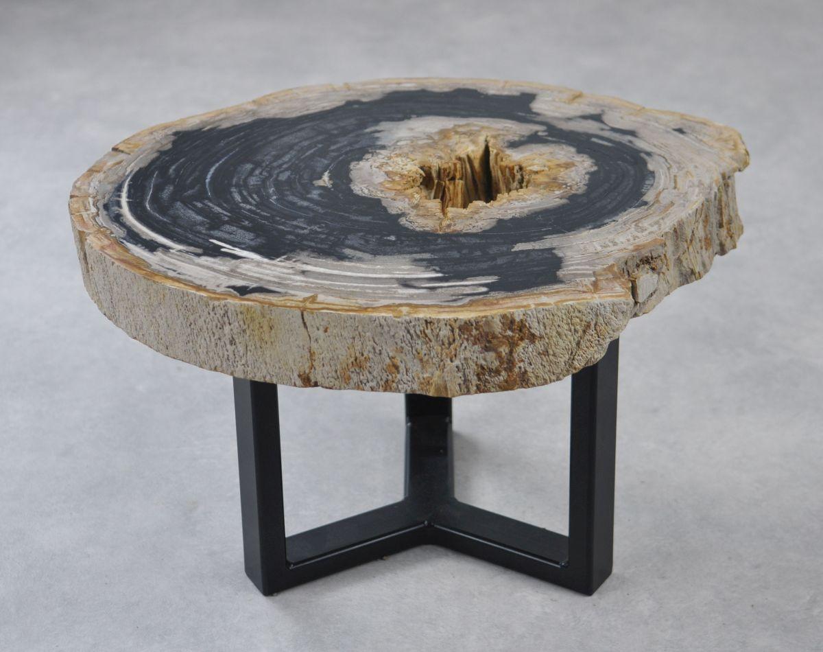Salontafel versteend hout 35160