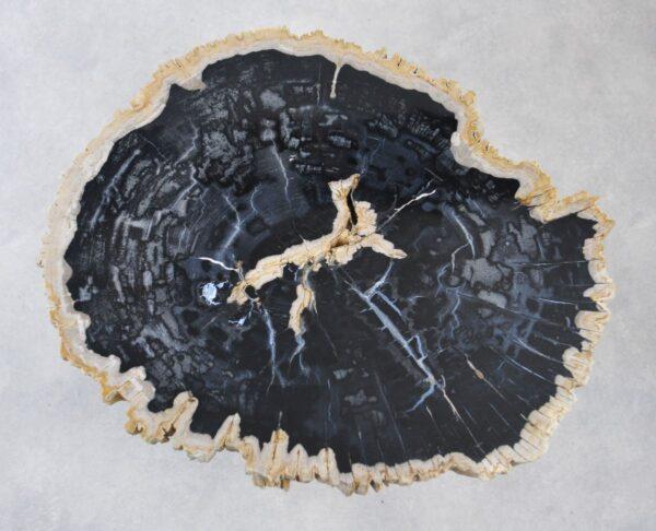 Salontafel versteend hout 35170