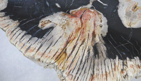 Salontafel versteend hout 35207