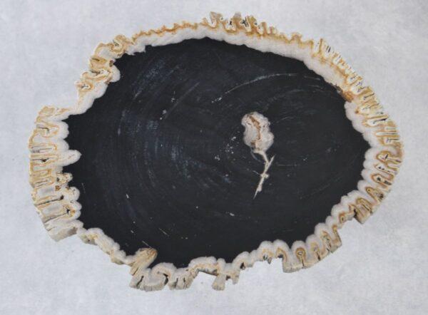 Salontafel versteend hout 35238