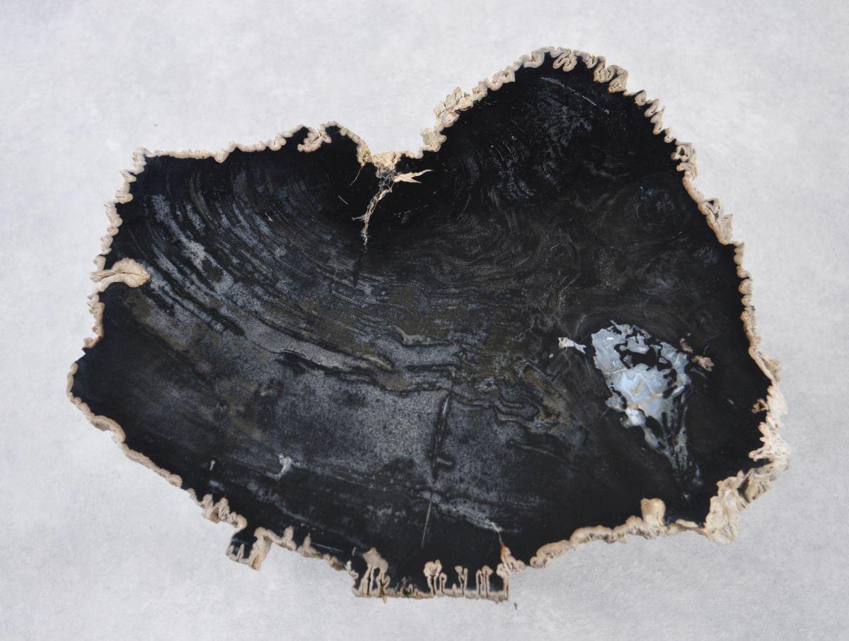 Salontafel versteend hout 35246