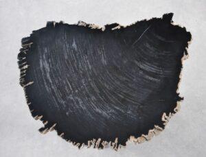 Salontafel versteend hout 35252