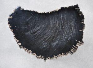 Salontafel versteend hout 35253