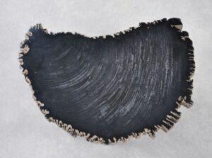 Salontafel versteend hout 35255