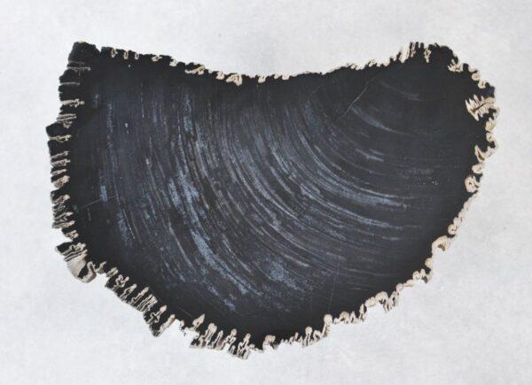 Salontafel versteend hout 35261