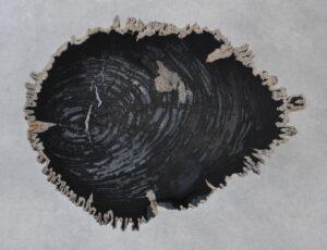 Salontafel versteend hout 35267