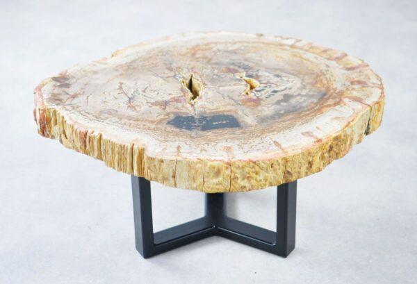 Salontafel versteend hout 35276