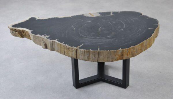 Table basse bois pétrifié 35129