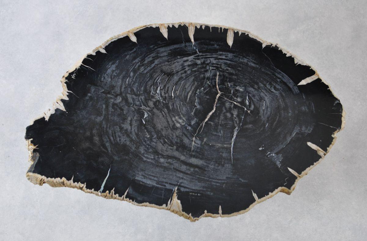Table basse bois pétrifié 35132
