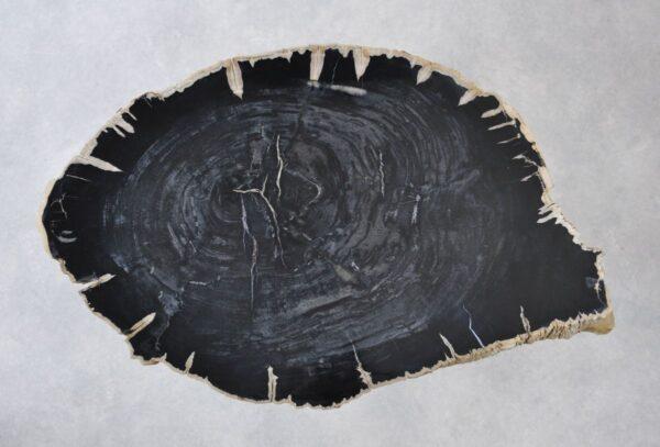 Table basse bois pétrifié 35135