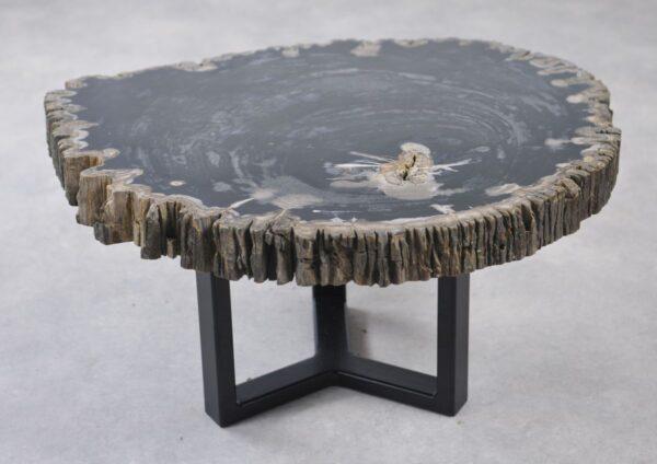 Table basse bois pétrifié 35136