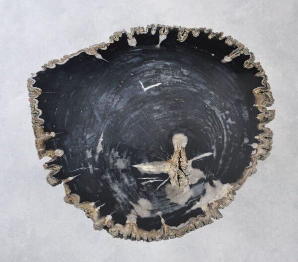 Table basse bois pétrifié 35137