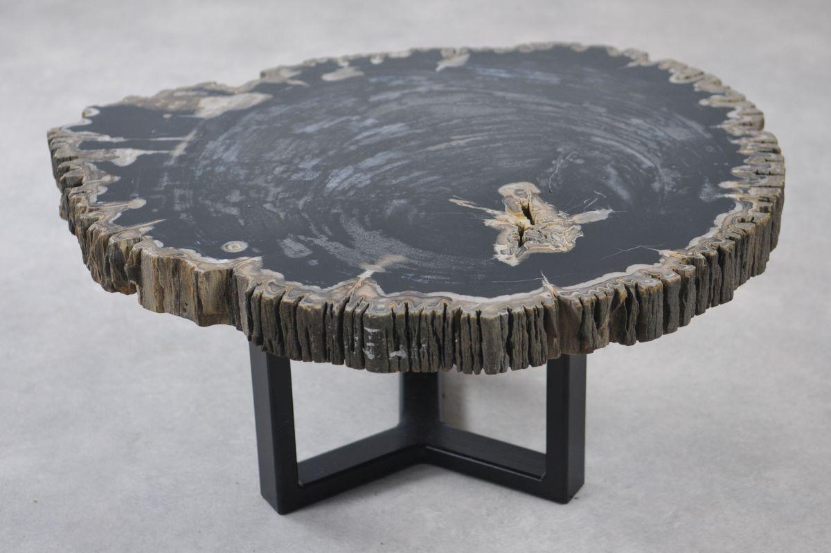 Table basse bois pétrifié 35141