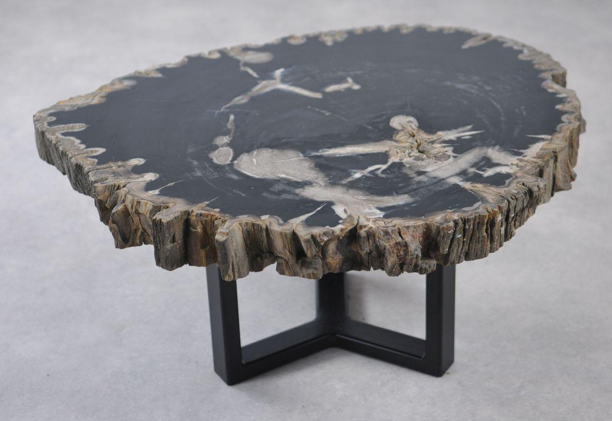 Table basse bois pétrifié 35146