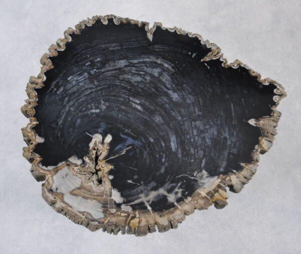 Table basse bois pétrifié 35149