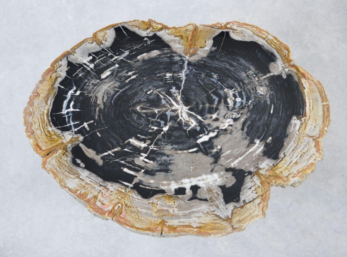 Table basse bois pétrifié 35151