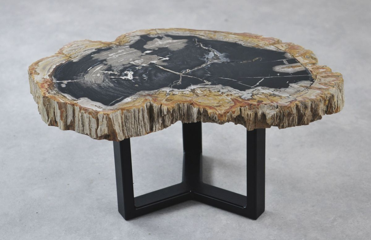 Table basse bois pétrifié 35154