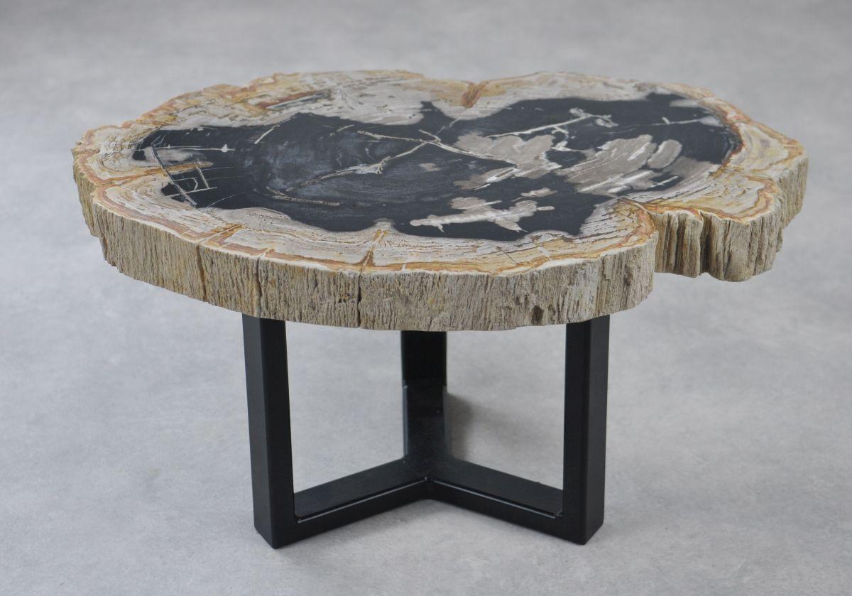 Table basse bois pétrifié 35156