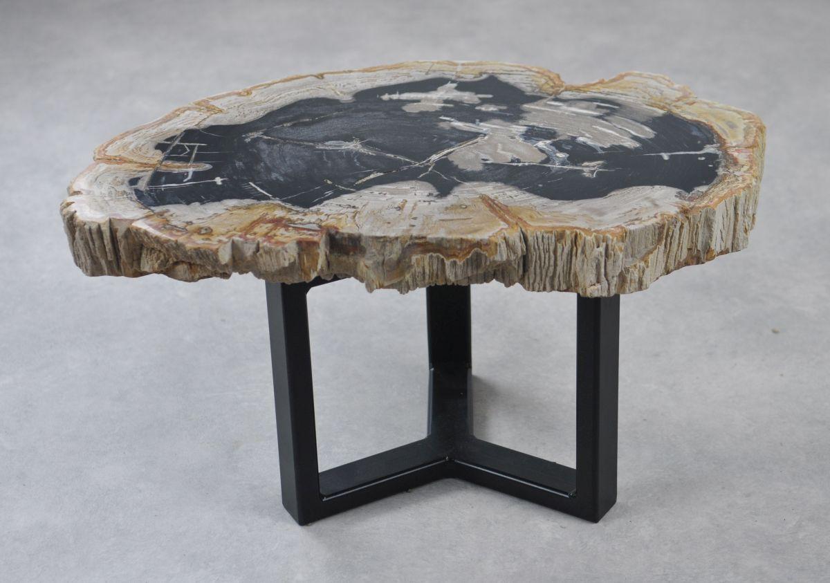 Table basse bois pétrifié 35157
