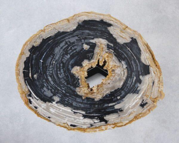 Table basse bois pétrifié 35158