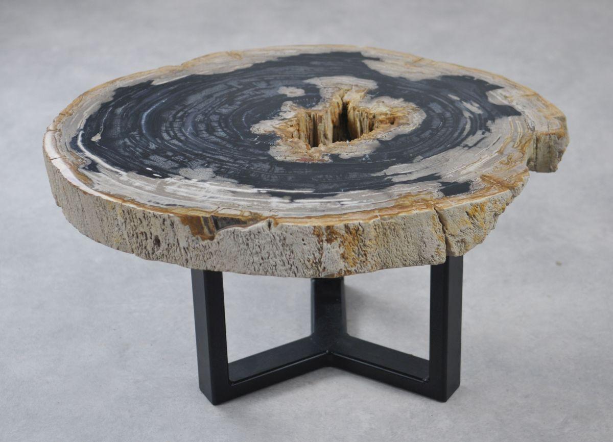 Table basse bois pétrifié 35159