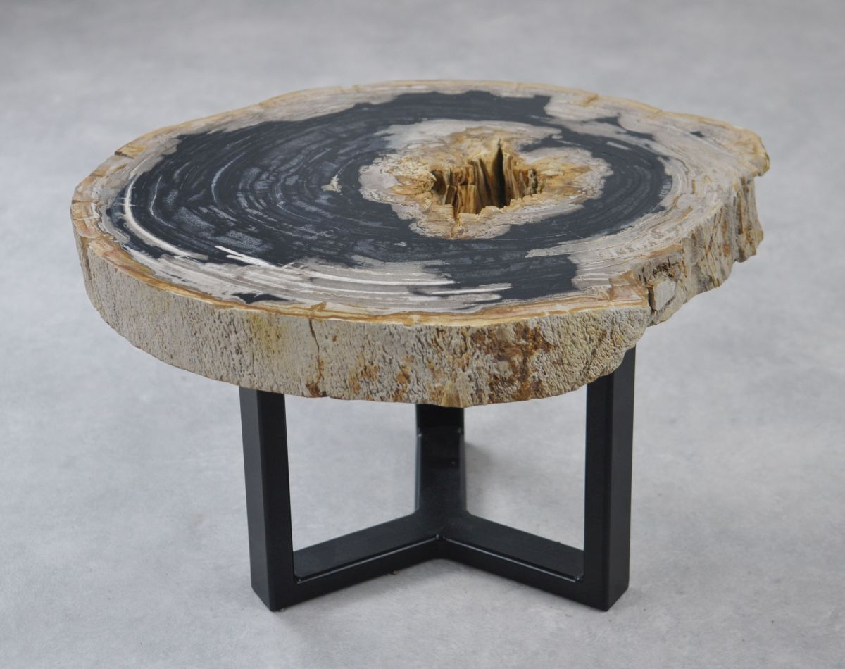 Table basse bois pétrifié 35160