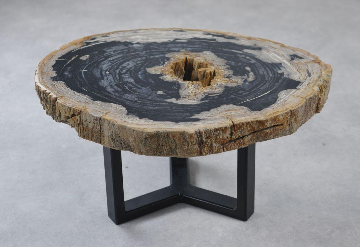 Table basse bois pétrifié 35161
